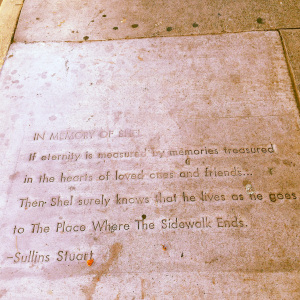 shelia-taylor-following-my-songline-I-know-where-the-sidewalk-ends